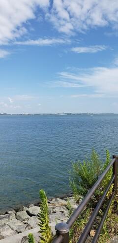 現場近くの海